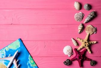 ピンクの木製の背景に貝殻