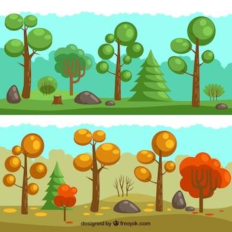 Seasonal forest