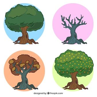Seasonal trees illustration