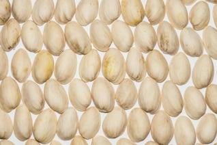 Shells of pistachios