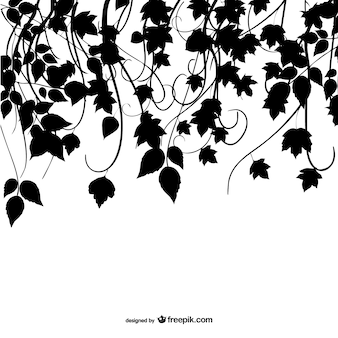 Silhouette leaves design