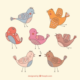 Sketchy cute birds