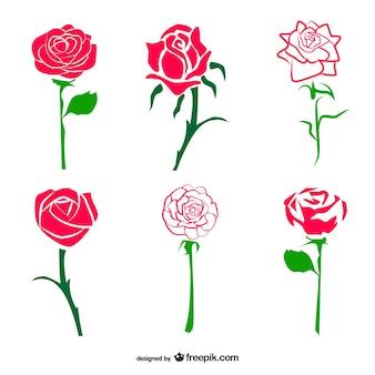 Sketchy roses