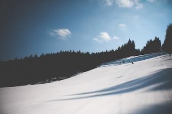 ski slope tracks