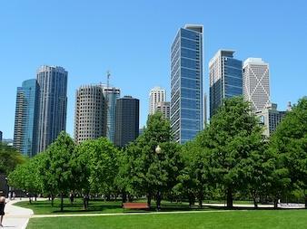 skyline chicago skyscraper illinois buildings park