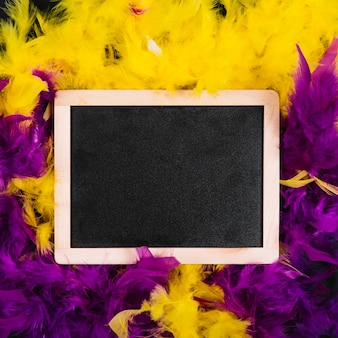 Slate on yellow and purple feathers