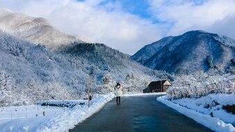 Snow xmas blue wonderland snowstorm