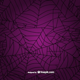 Spider web background