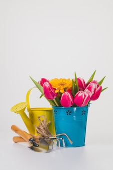 Spring background with gardening tools