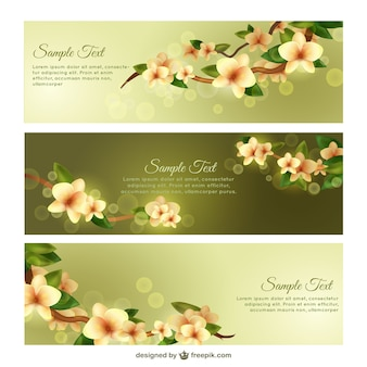Spring banner templates