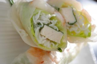 Spring rolls, asia