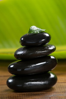 Stack of pebble stones with green leaf