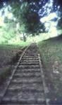 Stairway to heaven, garden