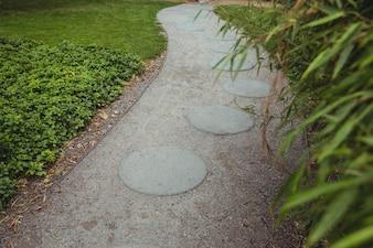 Stepping stone garden path