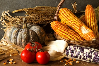 Still Life with harvest