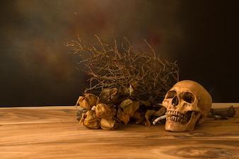 人間の頭蓋骨の静物