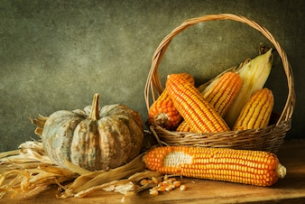 Still Life With pumpkin and corn