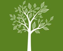 Stock abstract tree vector