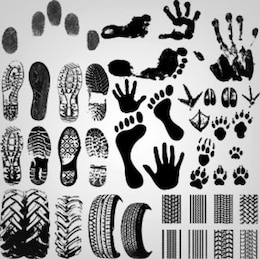 Stock Illustration: Collection of shoeprint footprint