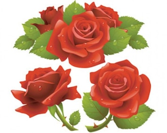 Stock Ilustrations Red Roses Vector