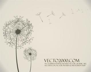 Stock vector dandelion