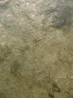 Stone Texture, stone, hard