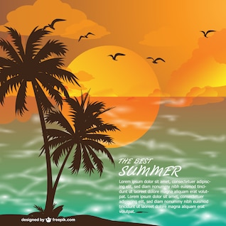 Summer beach at sunset vector background