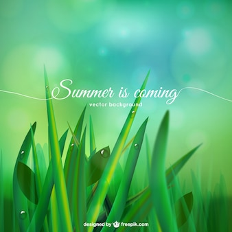 Summer is coming background