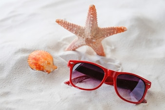 Sun glasses, star fish and sheashell at sand close-up for summer concept
