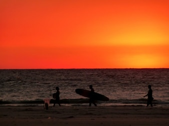 Surfering at dusk