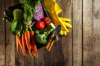 Tasty colorful fresh various seasonal vegetables in wooden box on wooden table. Top View. Cooking Concept. Copy Space.