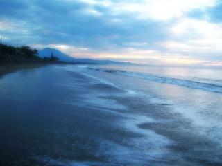 The atmosphere of coastal dunes, sand, beach, coastal