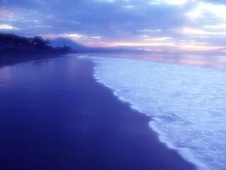 The atmosphere of coastal dunes, sand, beach