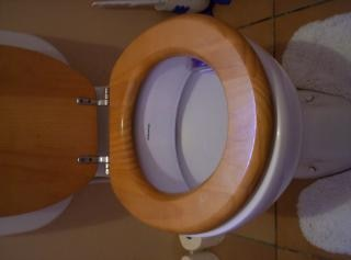 The Dunny, toilet