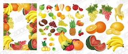 the fruits event vector