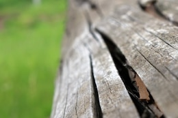 The texture of the cracked wood