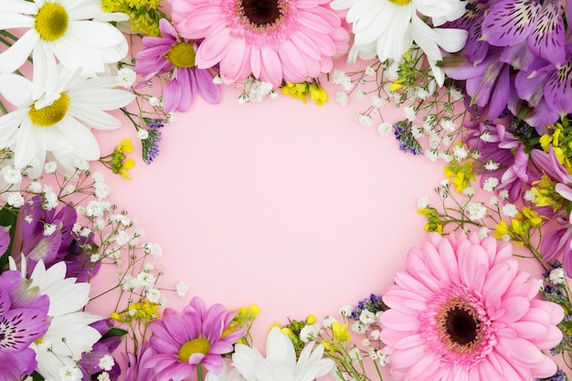 Top view floral frame with pink background