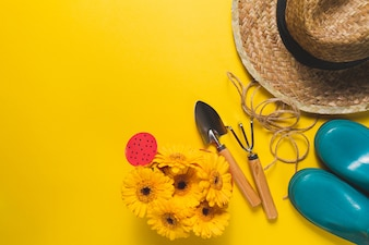 Top view of gardening items on yellow background