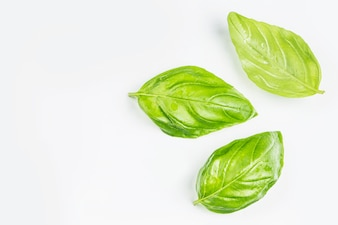 Top view of three green leaves