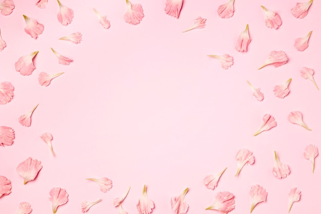 Top view petals on pink background