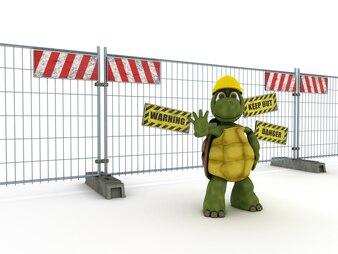 Tortoise keeping secure an area