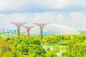 Tourist gardens building skyline sky