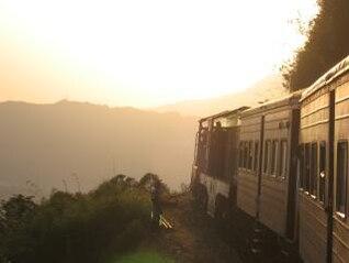 Train, grass