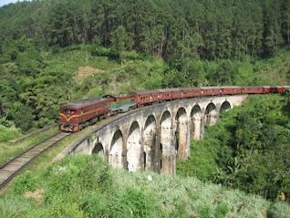 Train, summer
