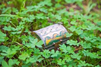 Treasure chest in  clover plant