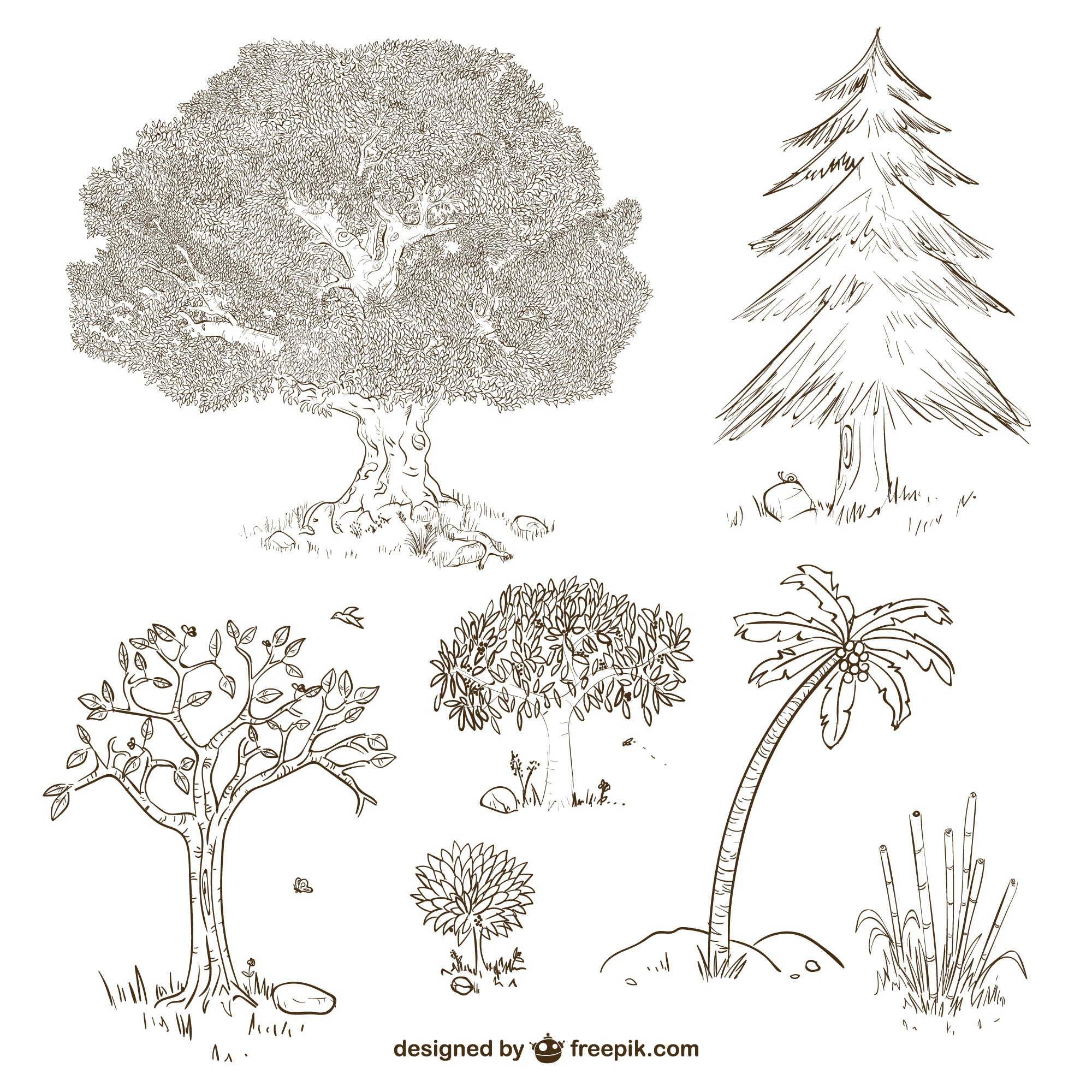 Trees and plants drawings