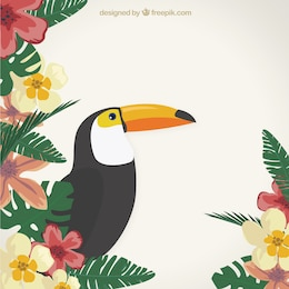 Tropical background with a Toucan
