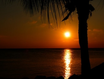 Tropical red sunset