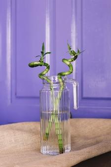 2つの竹の植物
