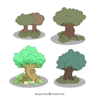 Variety of green trees
